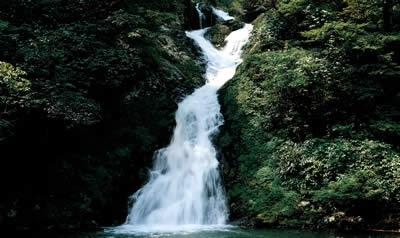 流水潺潺,红,白,黄,绿等色彩斑斓唱主角,将初秋的井冈山渲染的热闹